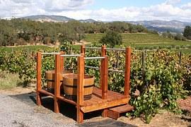 02908-vineyard-1331574__180.jpg