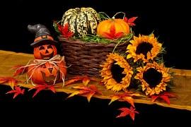 02956-autumn-20461__180.jpg