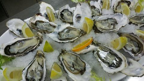 03091-oysters-608905__340.jpg