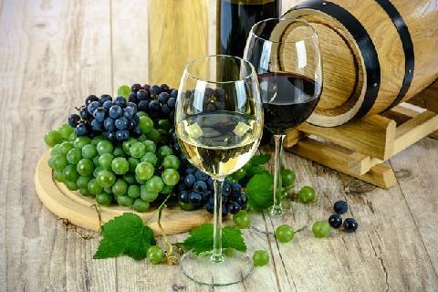03407-StamgstaGurman_vino_bile_lahev_a_hrozny.jpg