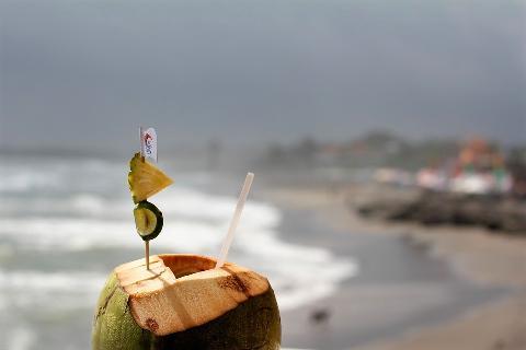 03933-coconut-2791979_960_720.jpg