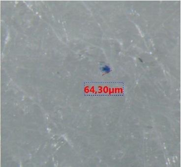 04278-Mikroplasty-granule-musle.jpg