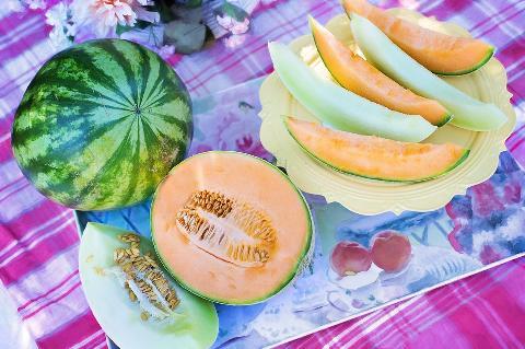 04290-melons-848086_960_720.jpg